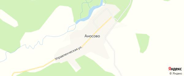 Карта села Аносово в Амурской области с улицами и номерами домов