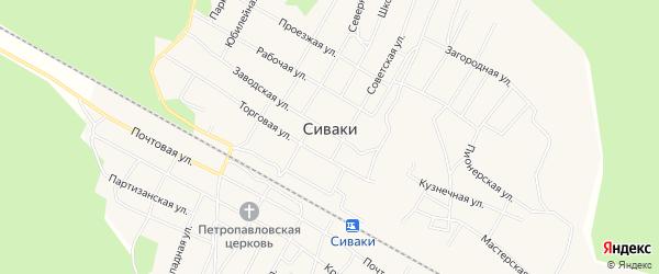Карта поселка Сиваки в Амурской области с улицами и номерами домов
