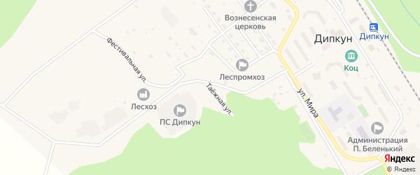 Таежная улица на карте поселка Дипкуна с номерами домов