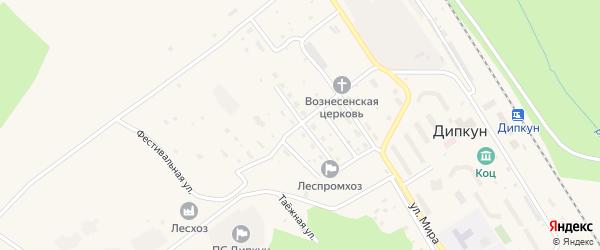 Молодежная улица на карте поселка Дипкуна с номерами домов