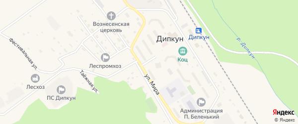 Дорожный переулок на карте поселка Дипкуна с номерами домов