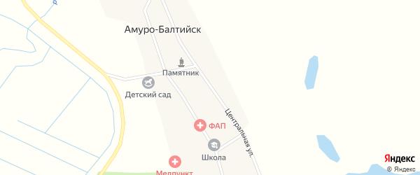 Центральная улица на карте села Амуро-Балтийска с номерами домов