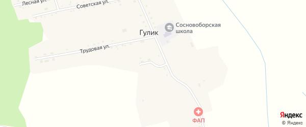 Заречный переулок на карте села Гулика с номерами домов