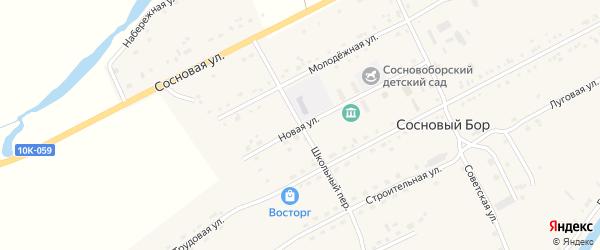 Школьный переулок на карте села Соснового Бора с номерами домов