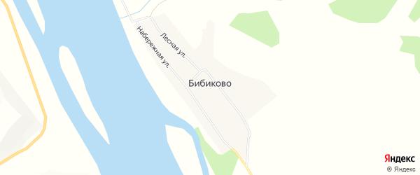 Карта села Бибиково в Амурской области с улицами и номерами домов