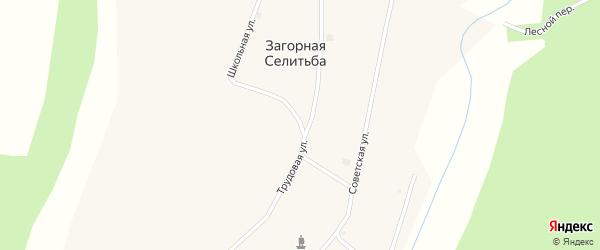 Молодежный переулок на карте села Загорной Селитьбы с номерами домов