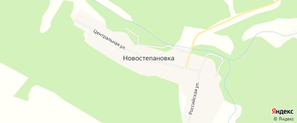 Карта села Новостепановки в Амурской области с улицами и номерами домов
