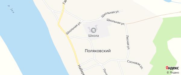 Лесная улица на карте Поляковского поселка с номерами домов