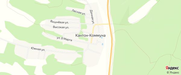 Карта села Кантон-коммуны в Амурской области с улицами и номерами домов