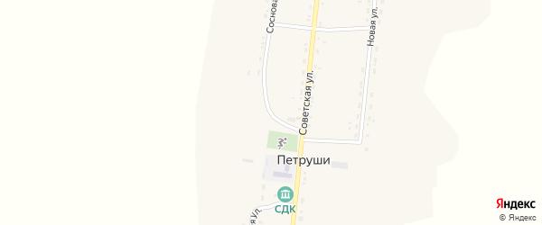 Сосновая улица на карте села Петруши с номерами домов