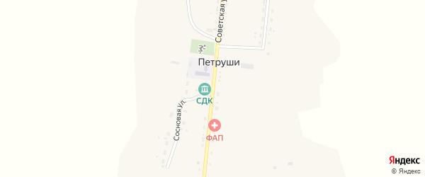 Советская улица на карте села Петруши с номерами домов