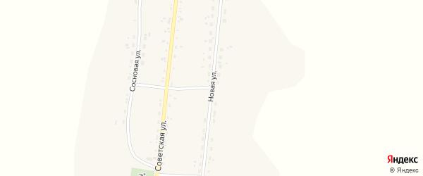Новая улица на карте села Петруши с номерами домов