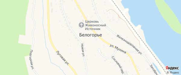 Островная улица на карте села Белогорья с номерами домов