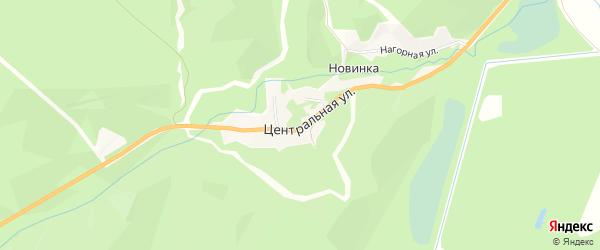 Карта села Новинки в Амурской области с улицами и номерами домов