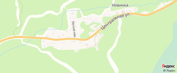 Лесной переулок на карте села Новинки с номерами домов