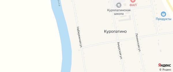 Набережная улица на карте села Куропатино с номерами домов