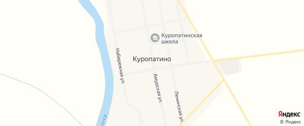 Карта села Куропатино в Амурской области с улицами и номерами домов
