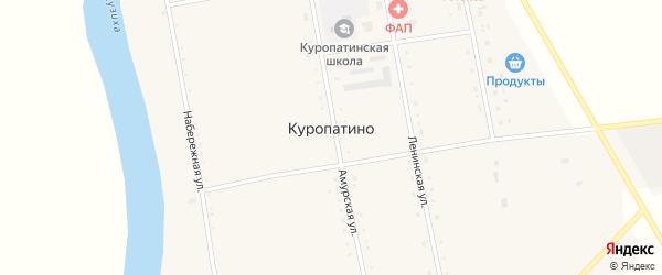 Школьный переулок на карте села Куропатино с номерами домов