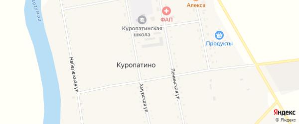 Амурская улица на карте села Куропатино с номерами домов
