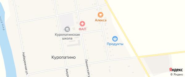 Ленинская улица на карте села Куропатино с номерами домов