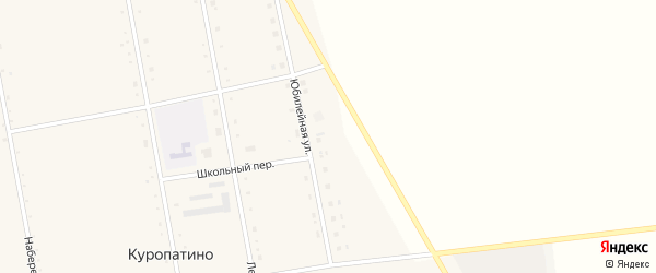 Юбилейная улица на карте села Куропатино с номерами домов
