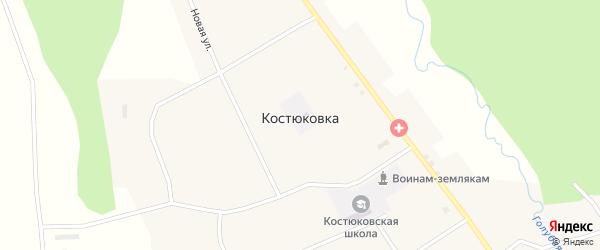 Народная улица на карте села Костюковки с номерами домов