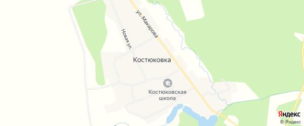 Карта села Костюковки в Амурской области с улицами и номерами домов