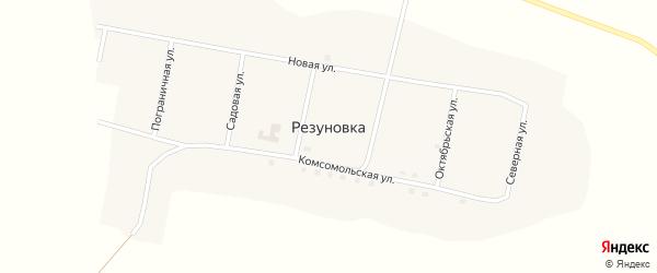 Садовая улица на карте села Резуновки с номерами домов