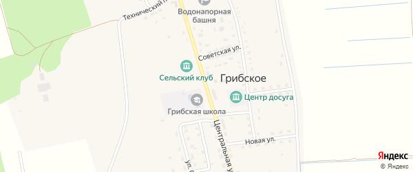 Центральная улица на карте Грибского села с номерами домов