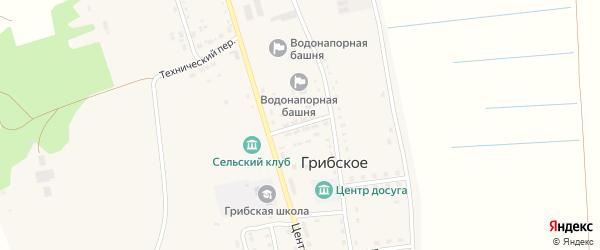 Советская улица на карте Грибского села с номерами домов