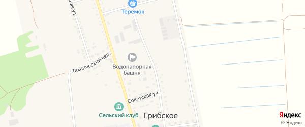 Медицинская улица на карте Грибского села с номерами домов