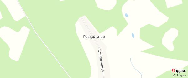 Карта Раздольного села в Амурской области с улицами и номерами домов