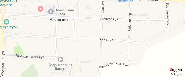 Новая улица на карте села Волково с номерами домов