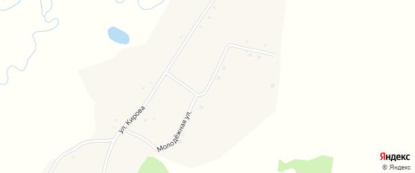 Молодежная улица на карте села Черемхово с номерами домов