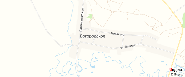 Карта Богородского села в Амурской области с улицами и номерами домов