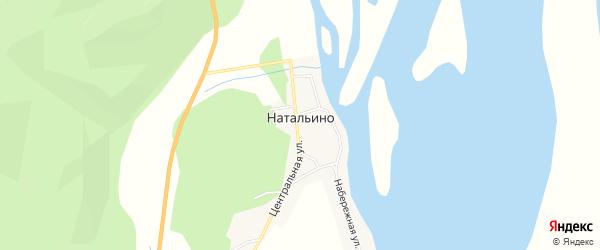Карта села Натальино в Амурской области с улицами и номерами домов