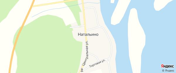 Торговая улица на карте села Натальино с номерами домов
