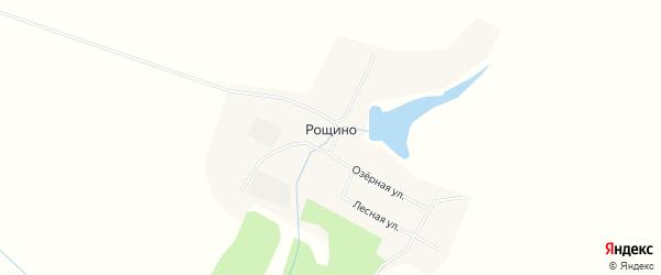 Карта села Рощино в Амурской области с улицами и номерами домов