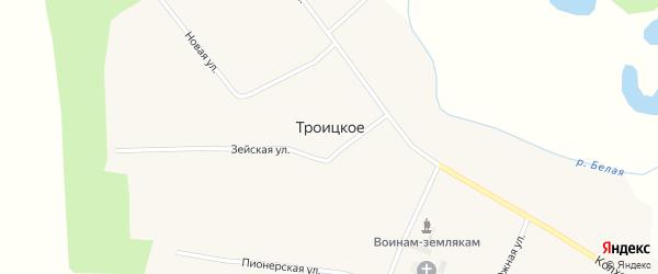 Новая улица на карте Троицкого села с номерами домов