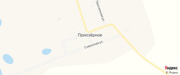 Центральная улица на карте Приозерного села с номерами домов