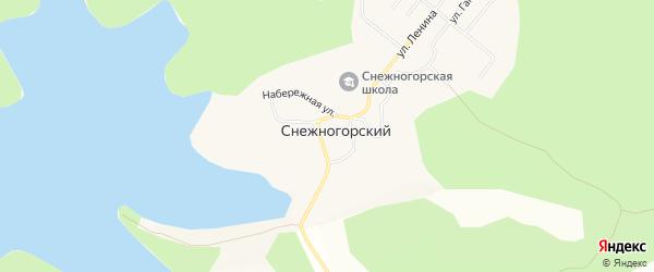 Карта Снежногорского поселка в Амурской области с улицами и номерами домов