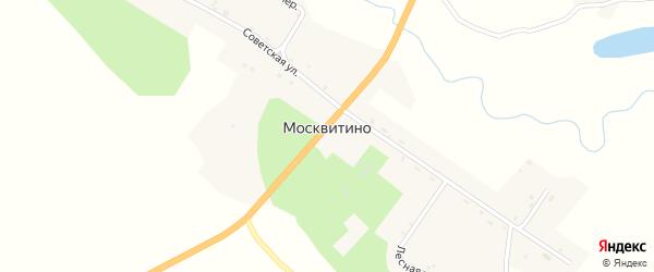 Луговой переулок на карте села Москвитино с номерами домов