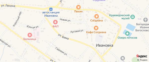 Луговая улица на карте села Ивановки с номерами домов