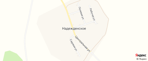 Центральная улица на карте Надежденского села с номерами домов
