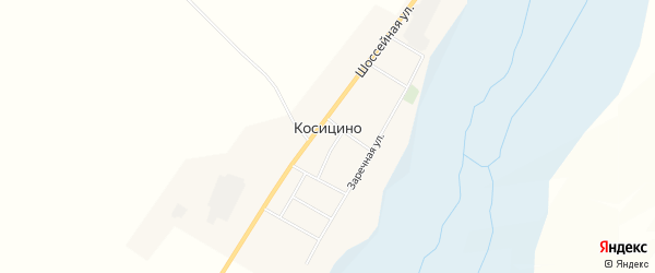 Карта села Косицино в Амурской области с улицами и номерами домов