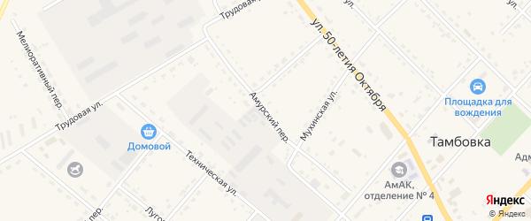 Амурский переулок на карте села Тамбовки с номерами домов