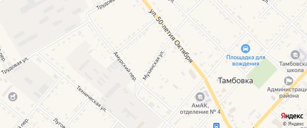 Мухинская улица на карте села Тамбовки с номерами домов