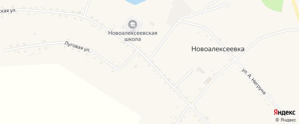 Гвардейская улица на карте села Новоалексеевки с номерами домов