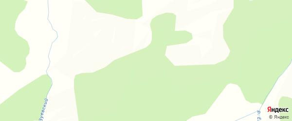 Карта станции Петруши в Амурской области с улицами и номерами домов