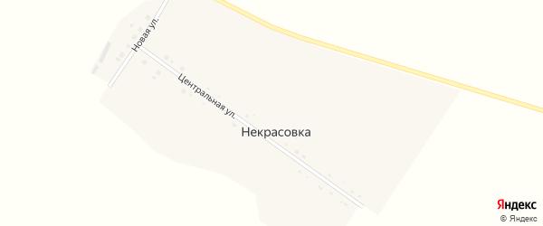 Центральная улица на карте села Некрасовки с номерами домов